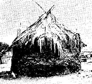 Cabaña-africana